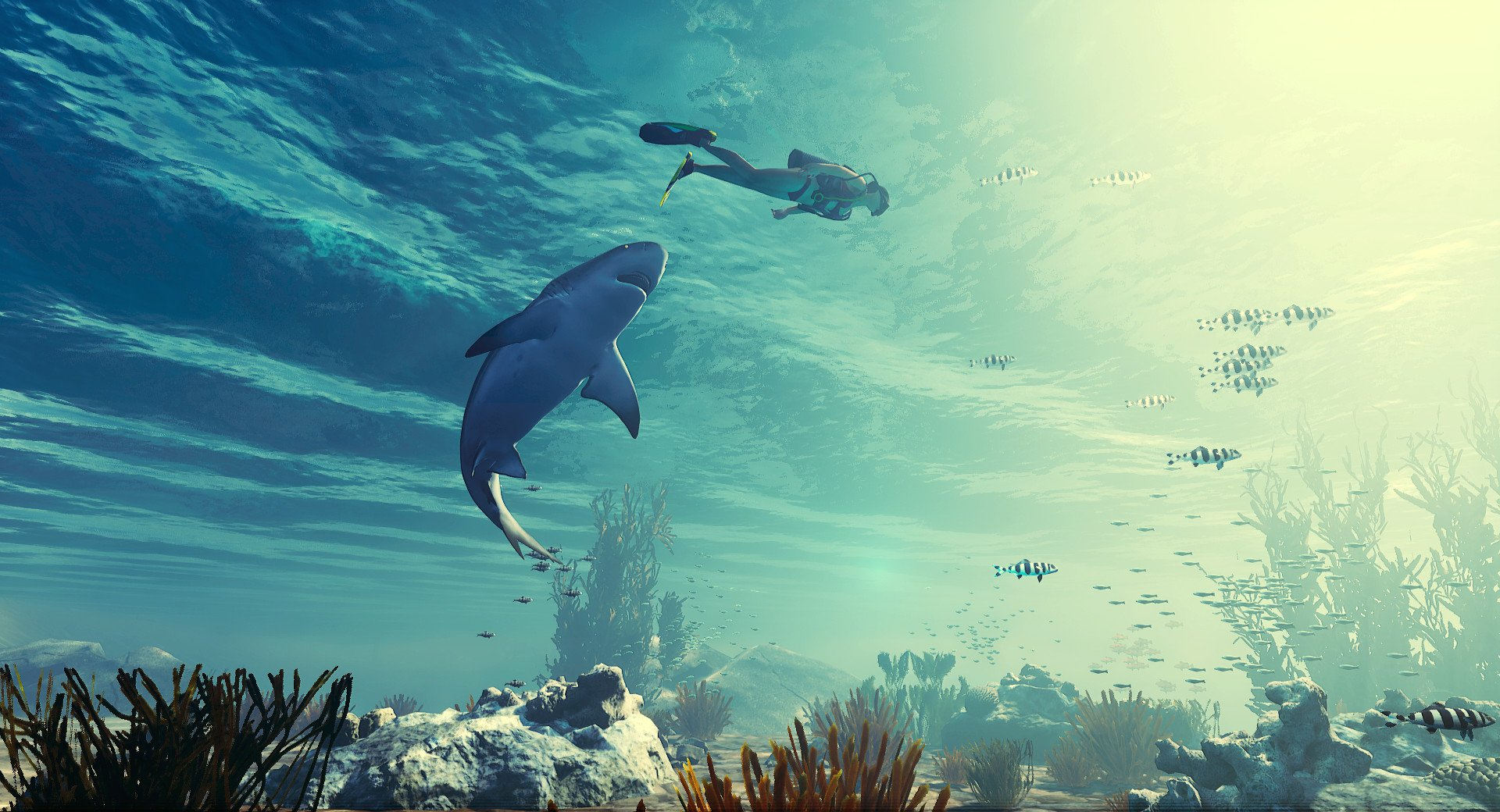 E3 2018 Shark Rpg Maneater Lets You Be The Shark